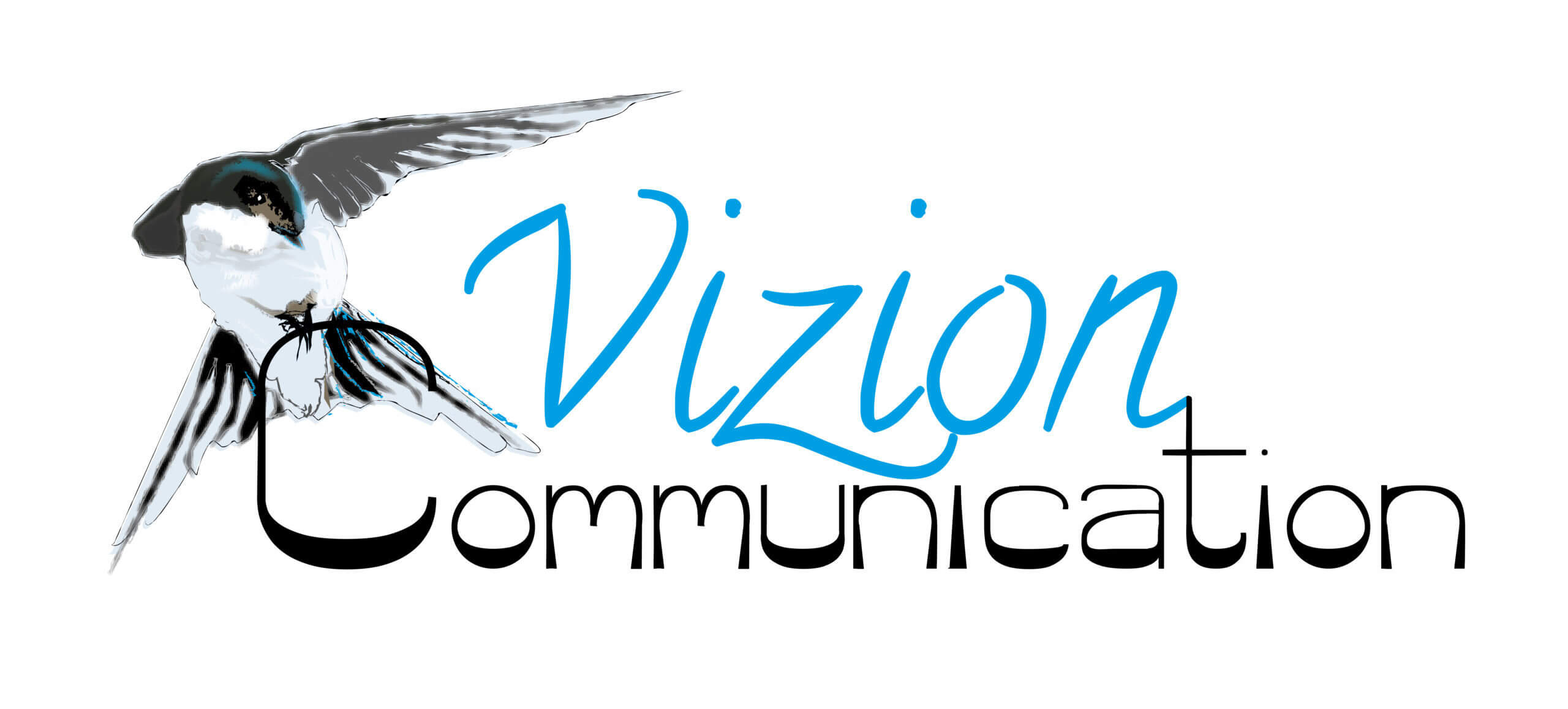 Vizion Communication